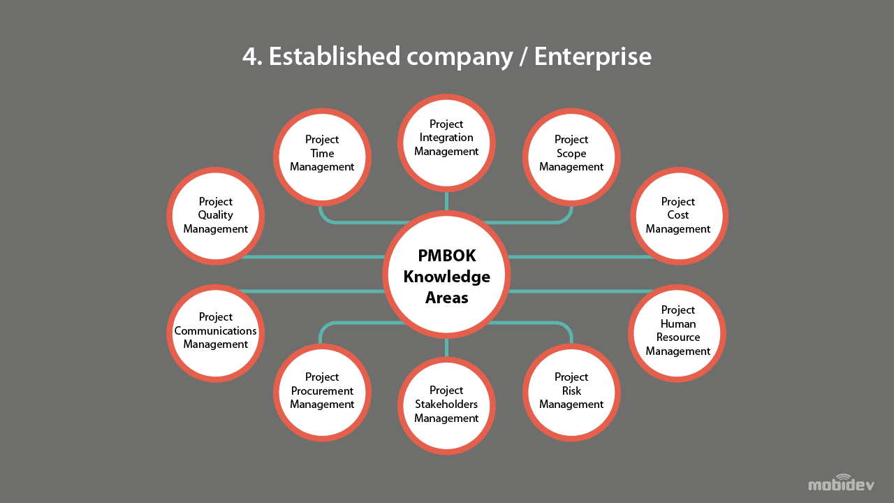 Structure of established company