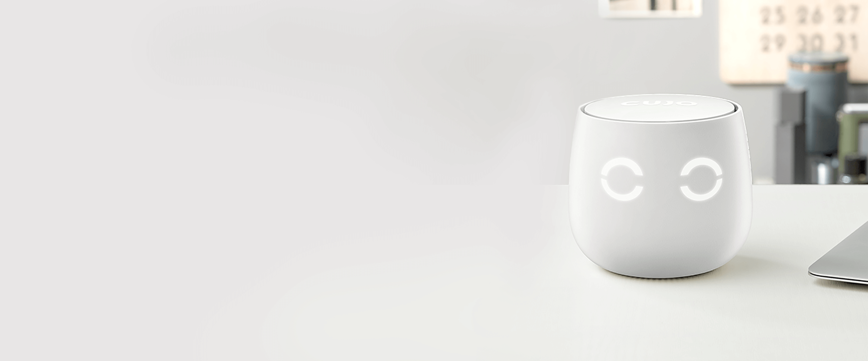 Case study: IOS app development for the consumer IoT