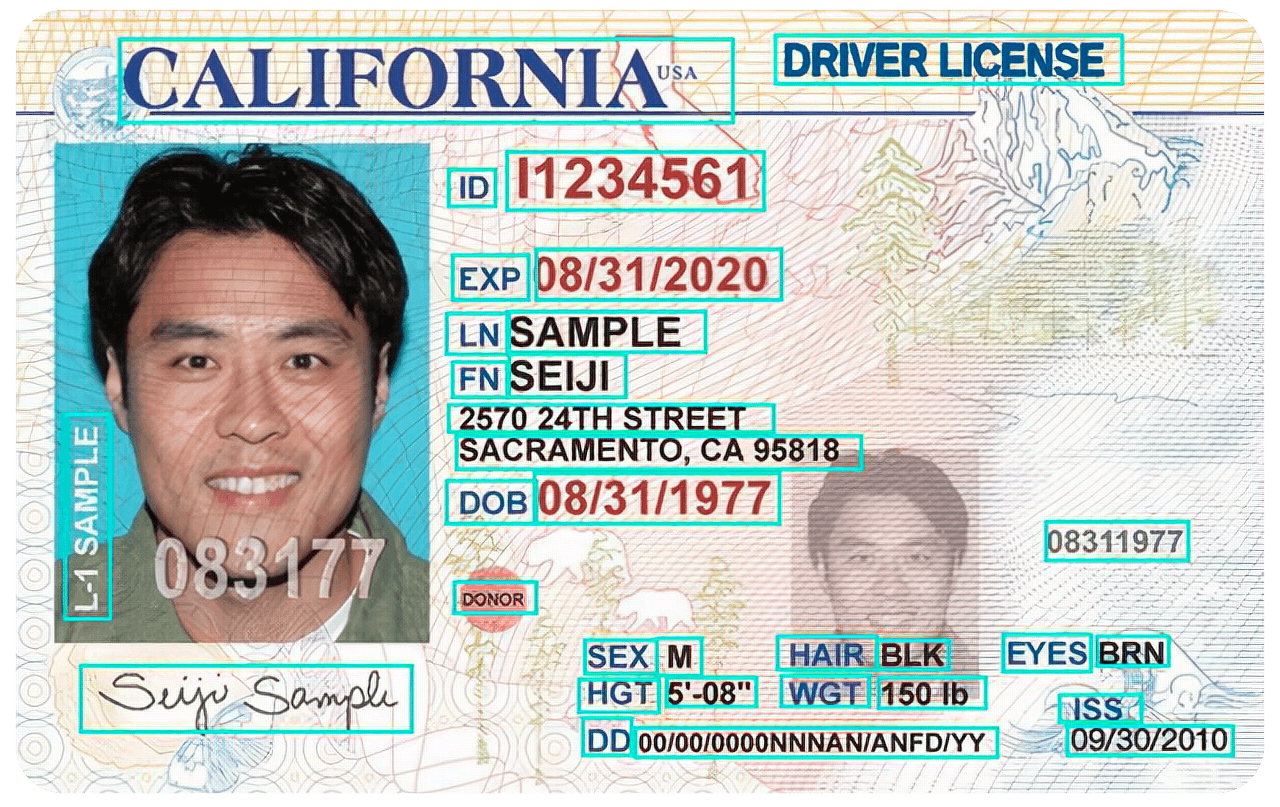 How neural network OCR detects drivers licenses