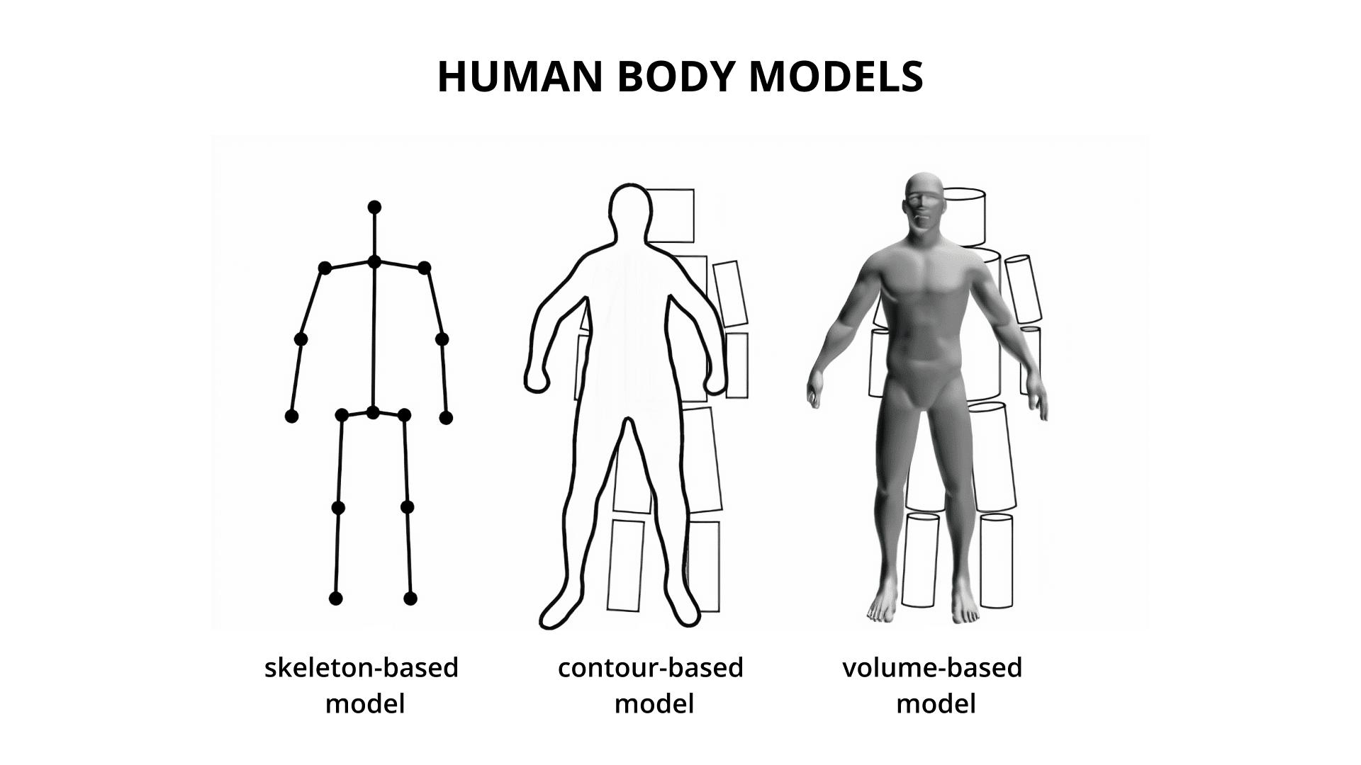 Human body models: skeleton-based, contour-based, and volume-based