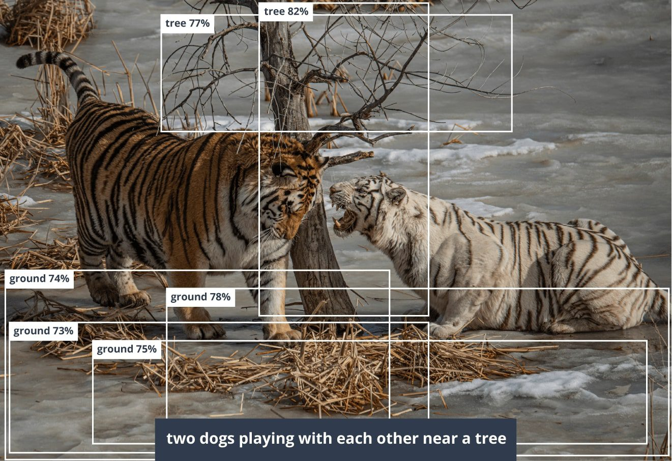 Neural Networks operate captioning unknown objects
