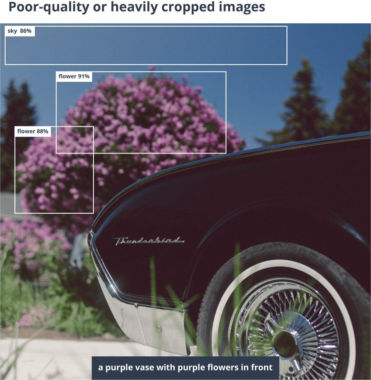 Errors made by AI image captioning